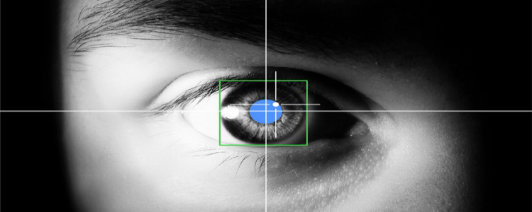 eyetracking_web